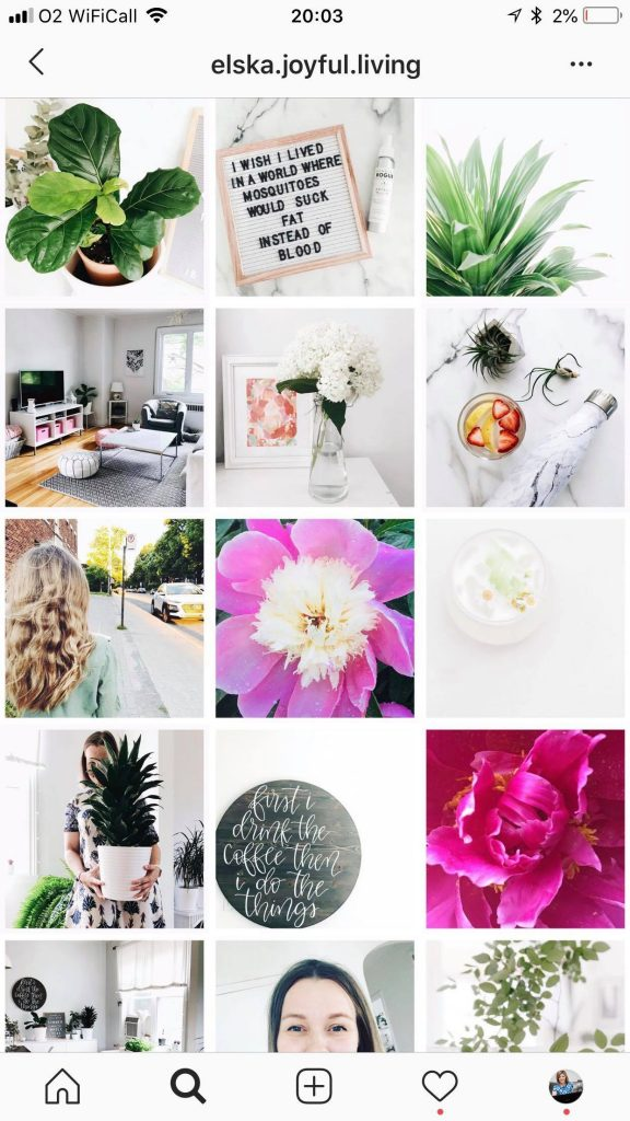 instagram-feed-themes-white-border.jpg