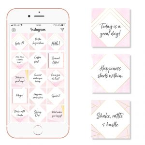 Pale Pink and Gold Instagram Templates